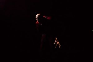 Dracula Asylum - Le Comte Dracula
